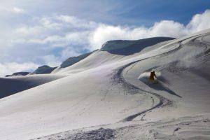 AIARE Avalanche Course Pro Rec Split