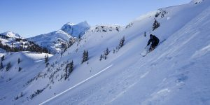 Backcountry Skiing Pro Course