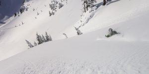 Backcountry Skiing Pro Course