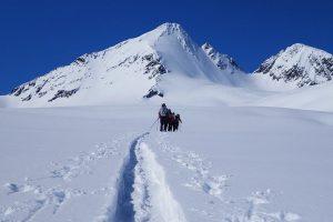 Backcountry Pro 3 Course